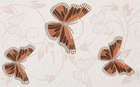 Decor Butterfly 25x40 (400x250)