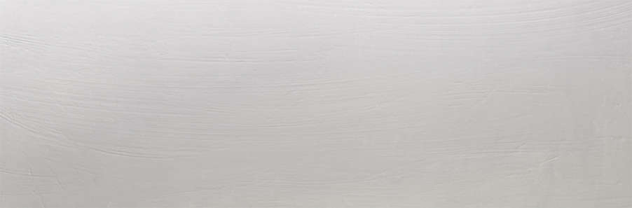 Gris Rectificado (902x300)